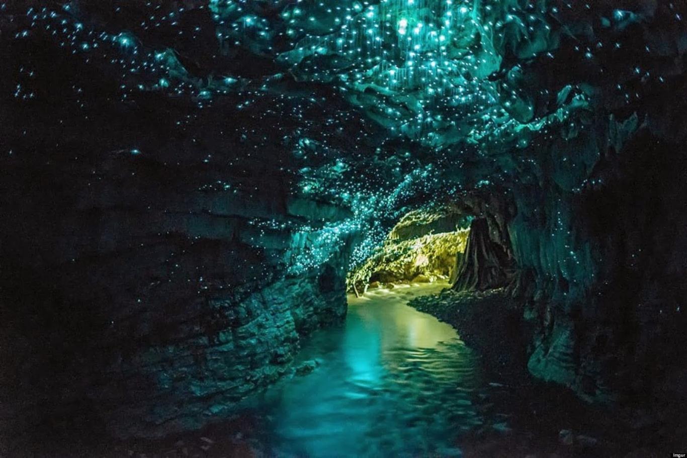 Hang động Waitomo Glowworm thuộc đảo Bắc, New Zealand
