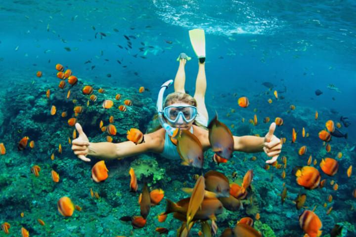 Lặn biển Hòn Mun Nha Trang 1 ngày
